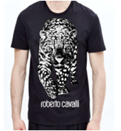 31022 - ROBERTO CAVALLI MEN´S T-SHIRTS, POLOS AND SWEATERS Europe