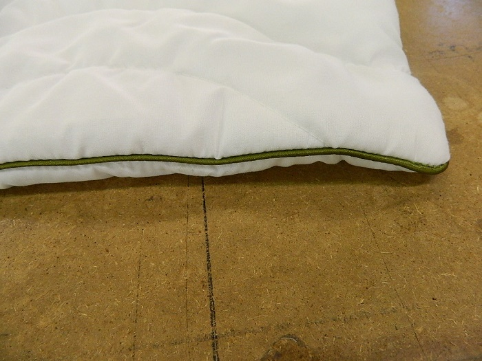 33897 - Pillow cases without filler Europe